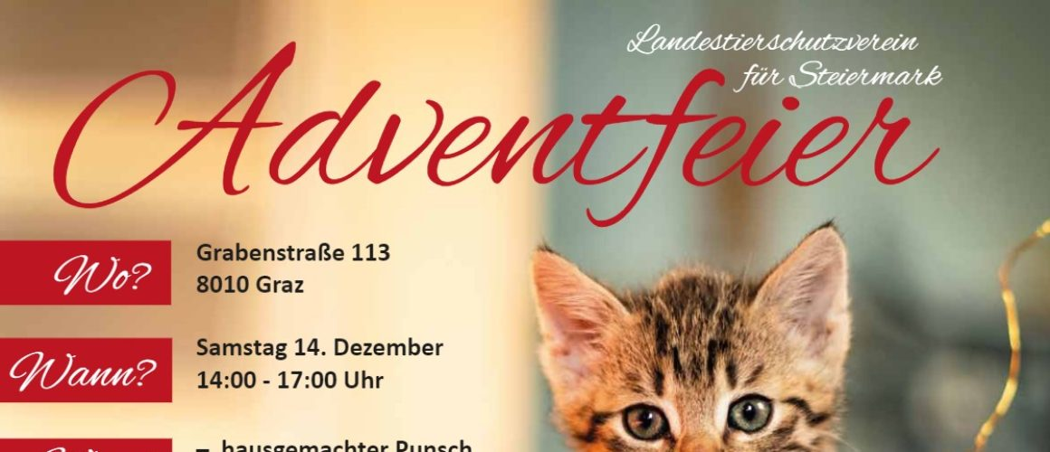 Adventfeier am 14.12.2019