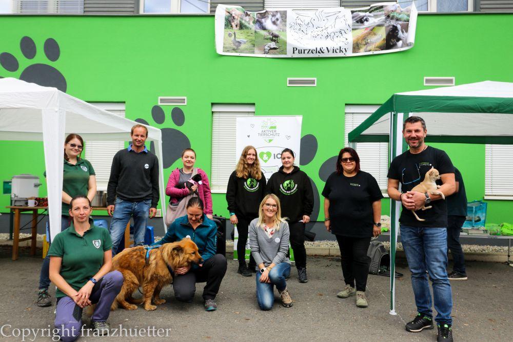 Wanderung Welttierschutztag